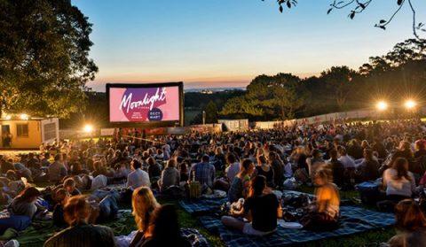 野外映画祭