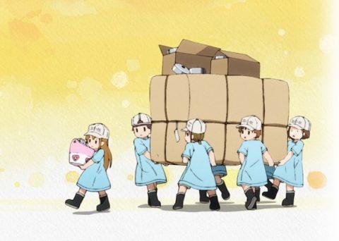 荷物を運ぶ血小板