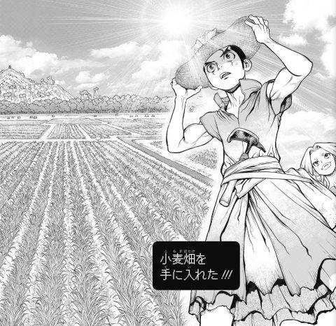 小麦畑を作り上げた大樹