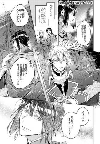 騎士団とセイ